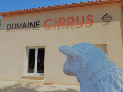 Domaine Cirrus et sa mascotte